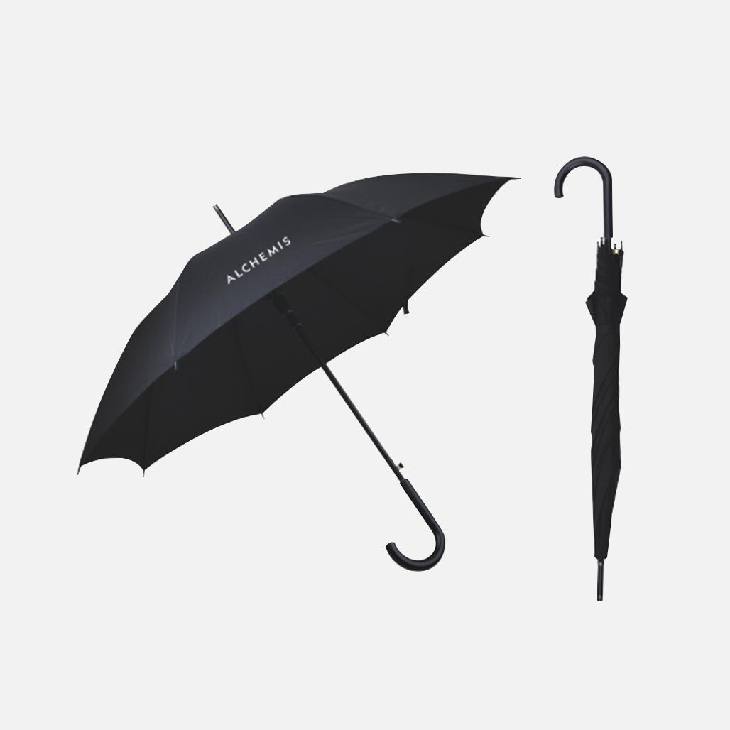 Business Umbrella 1