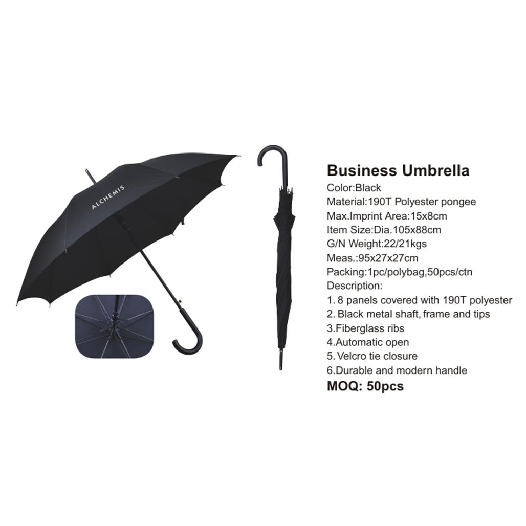 Business Umbrella 3