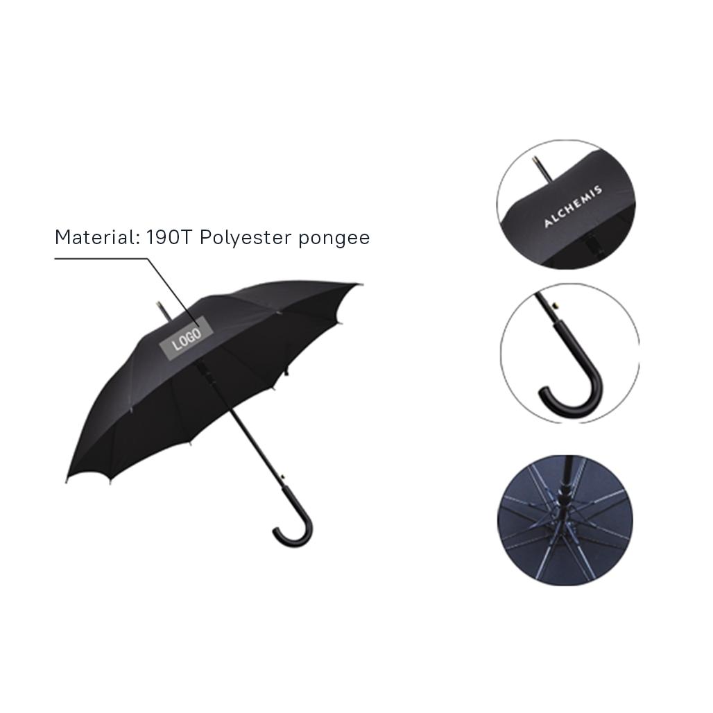 Business Umbrella 4