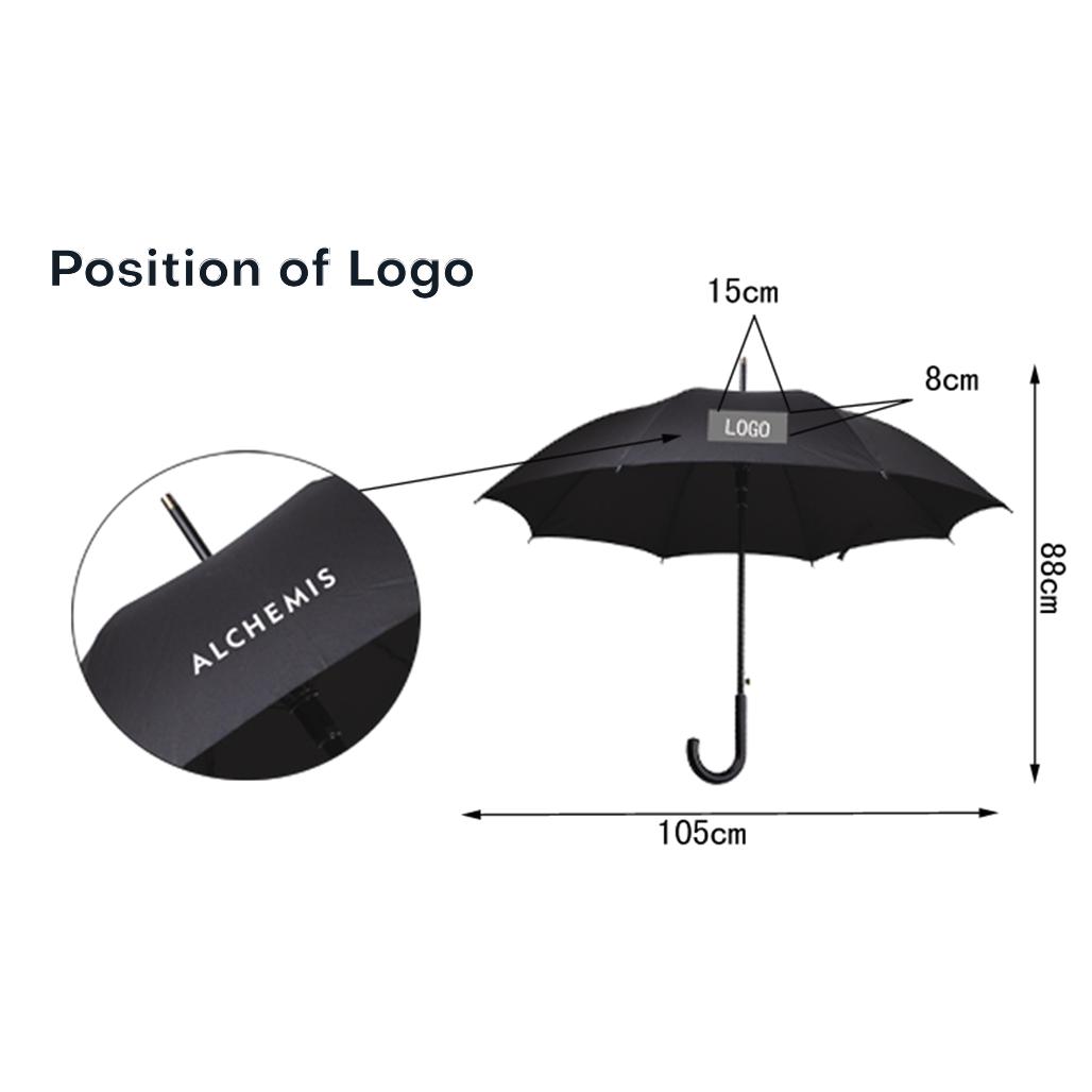 Business Umbrella 6
